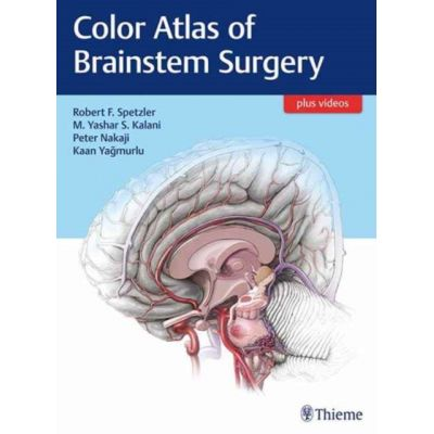 Color Atlas of Brainstem Surgery